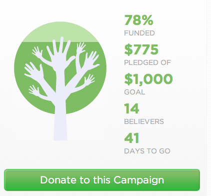 We've reached 78% of our goal of $1,000 for the Roof Over for Women and Children homeless shelter.